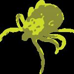 Teek afbeelding (groen)